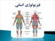پاورپوینت آناتومی و فیزیولوژی انسانی
